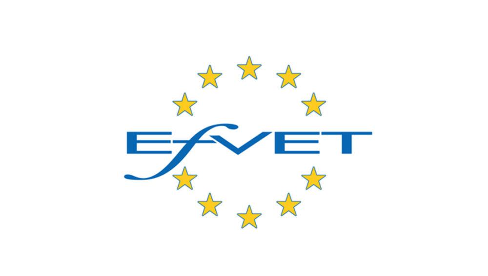 Tknika y FP-Euskadi, premio a la excelencia del Foro Europeo de la Formación Profesional EfVET