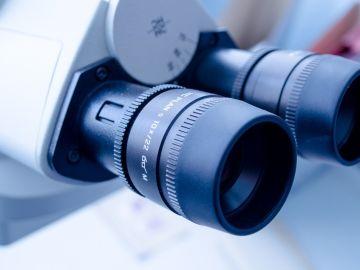 Más de 2.300 estudiantes participan en la Miniferia de la Ciencia en Fuerteventura