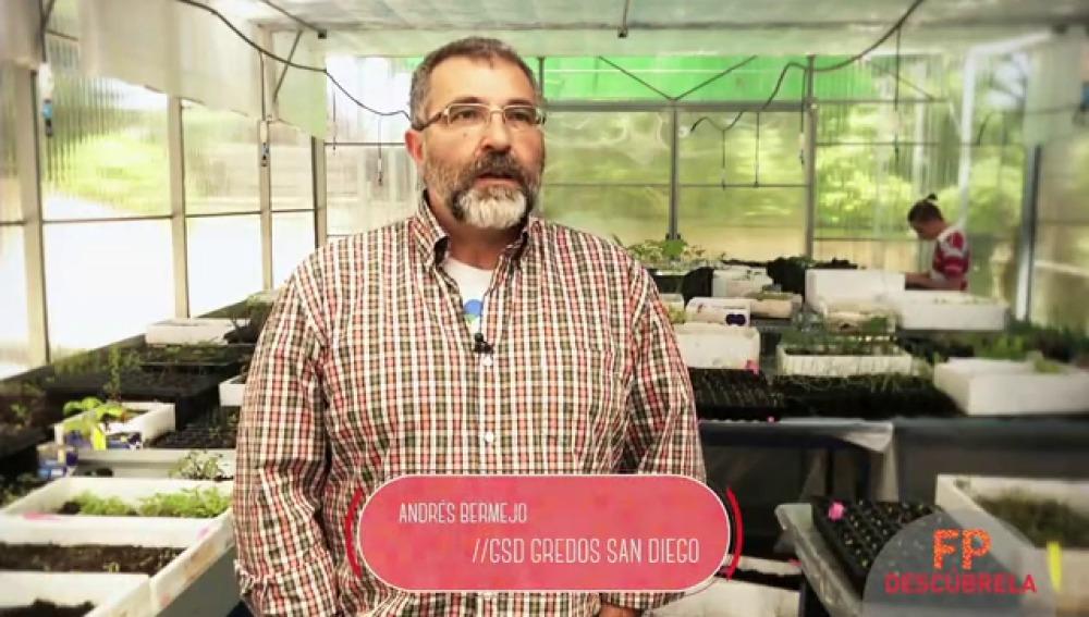 GRADO SUPERIOR: Técnico Superior en Gestión Forestal y del Medio Natural