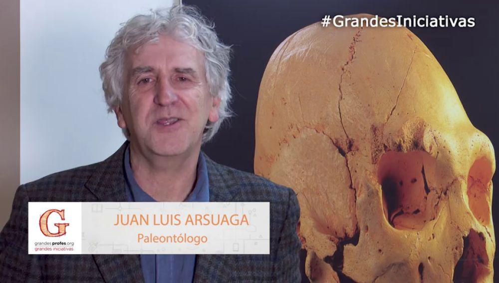 Juan Luis Arsuaga, te anima a presentar tu proyecto en los Premios 'Grandes Profes, Grandes Iniciativas'