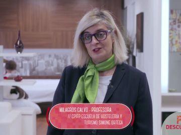 Profesional Básico en Alojamiento y Lavandería / FORMACIÓN PROFESIONAL BÁSICA
