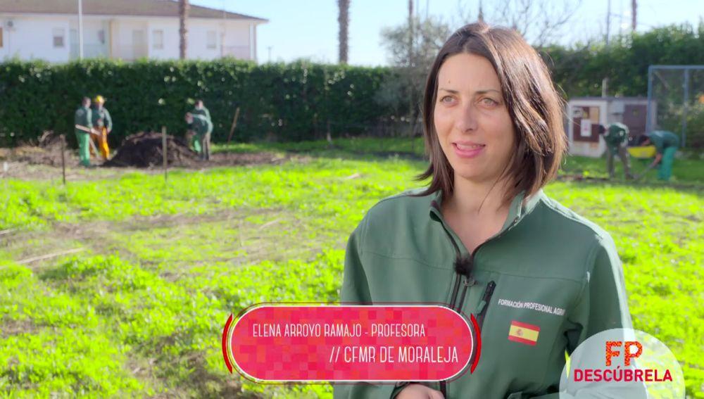 Profesional Básico en Actividades Agropecuarias